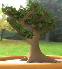Modelado de un Árbol con 3Ds Max