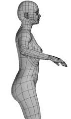 Modelado de la Figura Humana con Maya