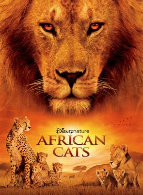felinos del áfrica