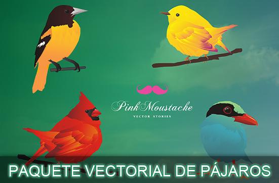 Paquete vectorial gratuito de 4 bellos y coloridos pájaros