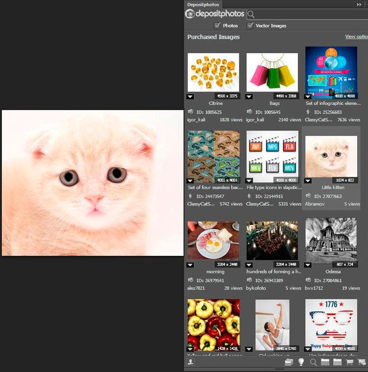 Extensión de Depositphotos para Adobe Photoshop, InDesign e Illustrator