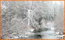 Simular Nieve y Niebla en una Fotografía