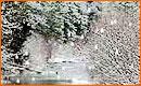 Efecto Caída de Nieve Sobre Paisaje con Flash