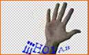 Como Realizar una Animaci�n Gif para msn o pagina web