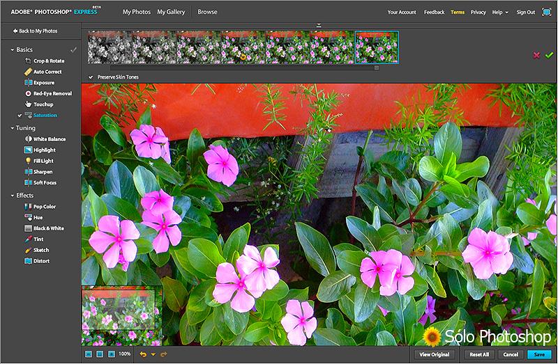 Photoshop Express: Opciones de Edición: Saturación