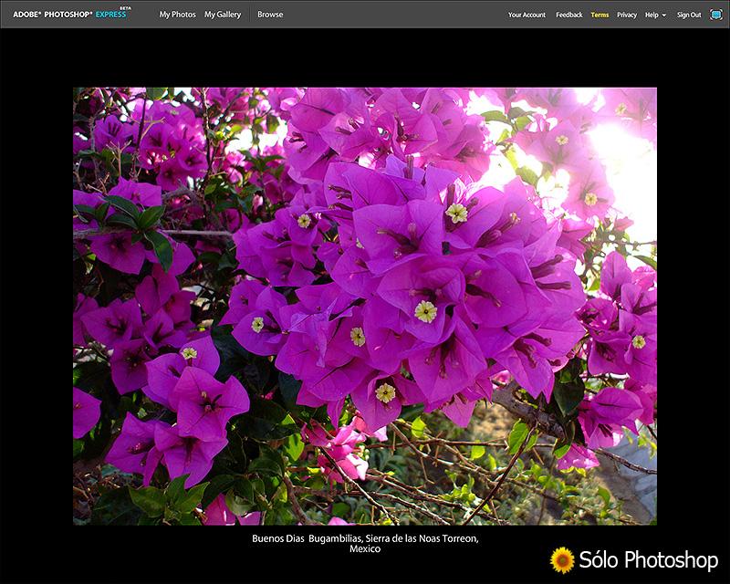 Photoshop Express: Presentaci�n Animada de Im�genes con Descripci�n en Pantalla Completa.