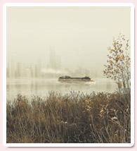 Efecto de Niebla