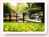 Jardín Resplandeciente