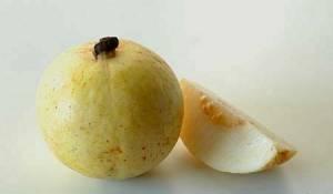 La Guayaba es Rica en Vitamina C