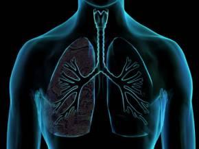 Consumir Más Vitamina C Mejora la Función Pulmonar