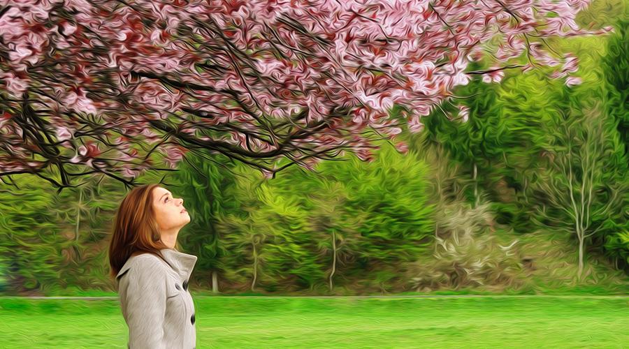 Pintura al Aceite en Photoshop CS6 Demo