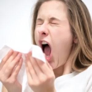 Remedios Naturales para Combatir las alergias como la Rinitis Alérgica
