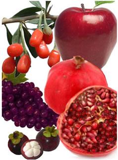 extracto vegetal